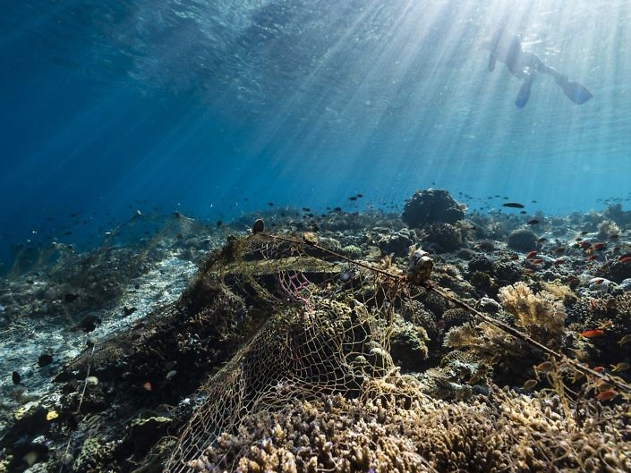 Ghost fishing net wrecking a reef in a remote part of Indonesia.