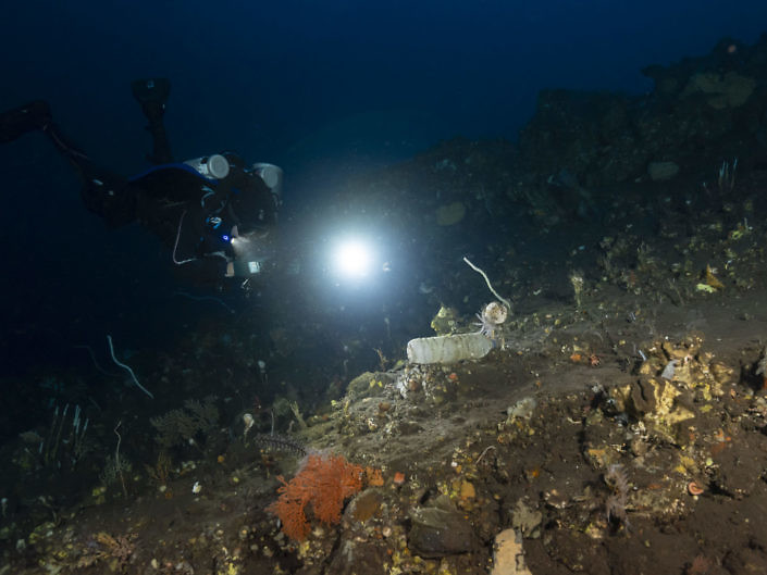 Plastic bottle found on a reef in Indonesia, at -100 metres deep.